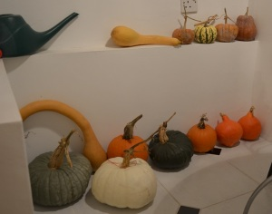 squashes in store