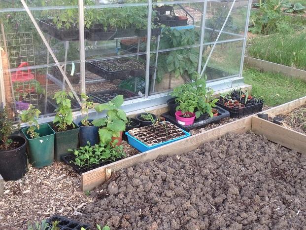 outdoor nursery